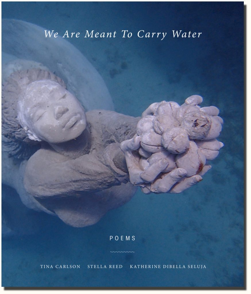 We Are Meant To Carry Water